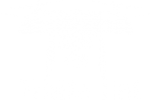 whitehatdroning